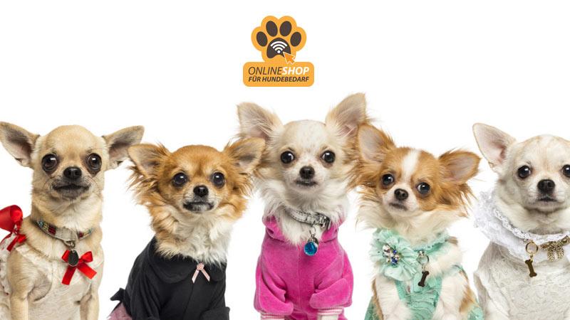 hunde-bedarf.com
